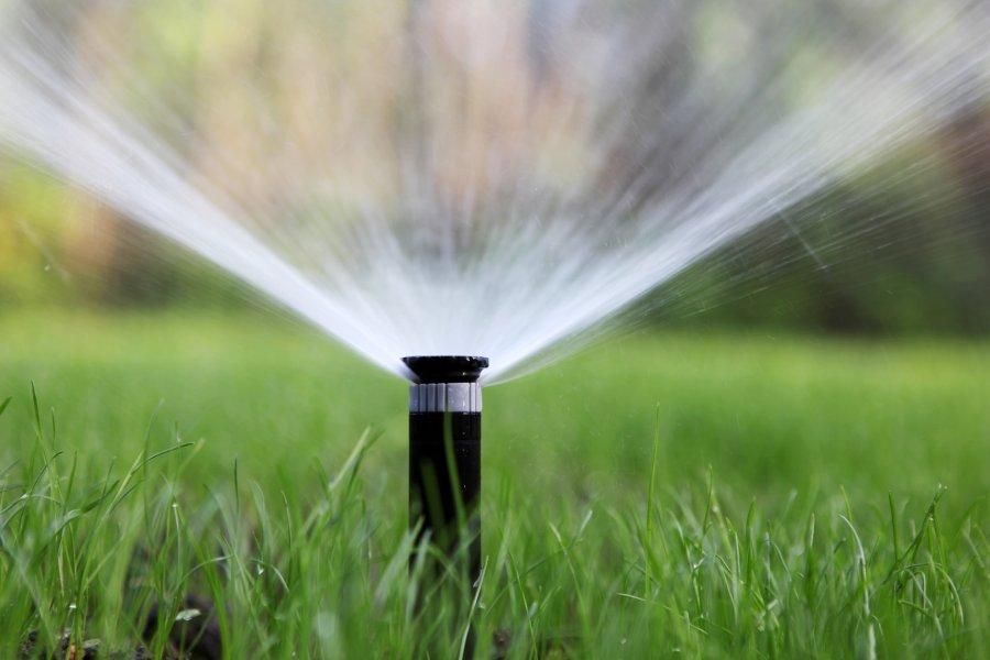 ¿Cómo ahorrar en el riego del jardín?