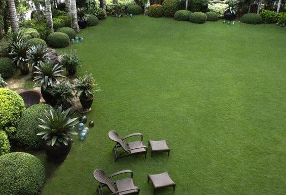 Jardin siempre bonito